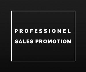 Professionel Sales Promotion